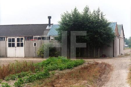 Gewächshäuser in Nordwijk, Holland