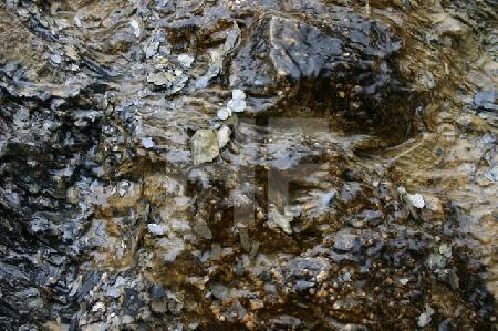 Wasser auf Stein