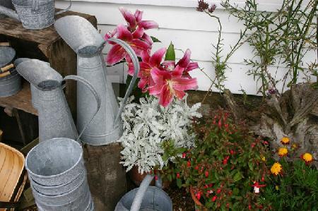 Alte Milchkannen und Blumen, 2005