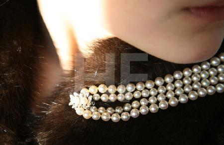 Perlen auf Nerz