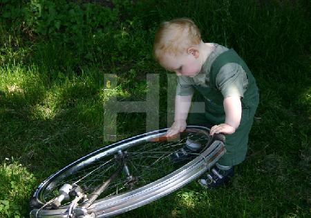 Wer erfand das Rad? (2)