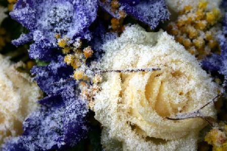 Verschneiter, blau-weißer Friedhofskranz