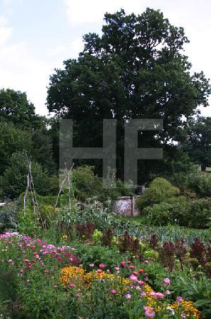 """Gemüsebeete im Park von """"Batemans"""", England, 2005"""