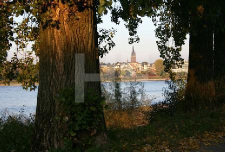 Blick über den Rhein auf Köln-Ensen vom Weißer Bogen aus