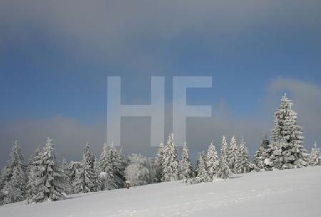 Schnee auf dem Kahlen Asten im Sauerland