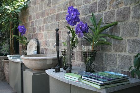 Violette Orchideen im Gewächshaus