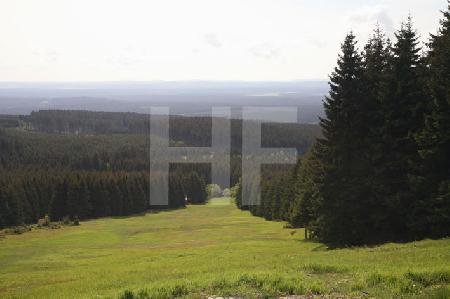 Blick ins Tal auf dem Weg zum Gipfel des Wurmbergs im Harz