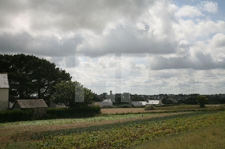 Bretonische Landschaft mit Kohlfeld