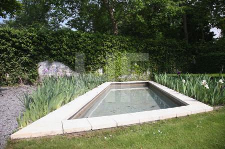 Garten N. (2)