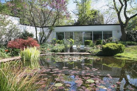 Der Teich im Garten B. 2007