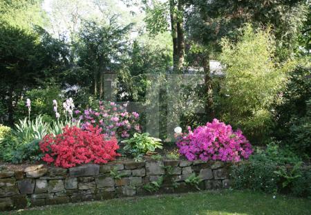 Garten H.