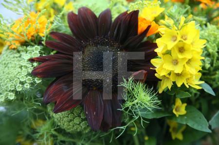 Sommerstrauß mit dunkelroter Sonnenblume