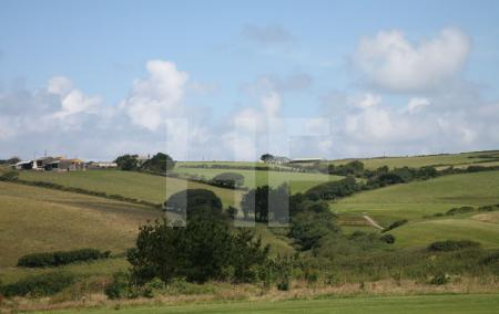 Landschaft bei Polzeath, Cornwall (5)