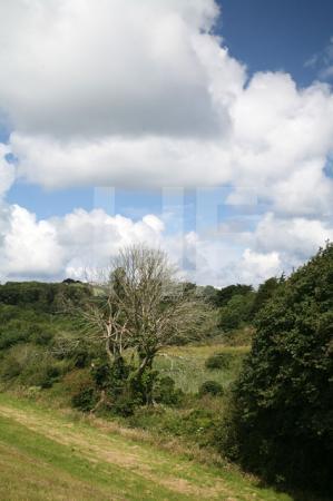 Landschaft bei Polzeath, Cornwall (7)