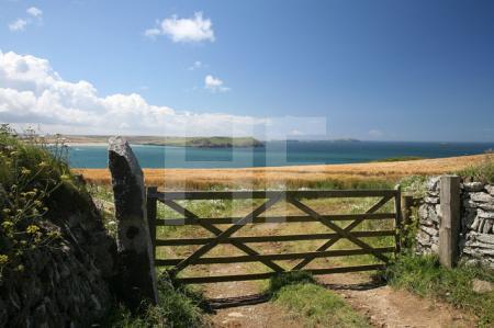 Pentire Head, Cornwall (34)