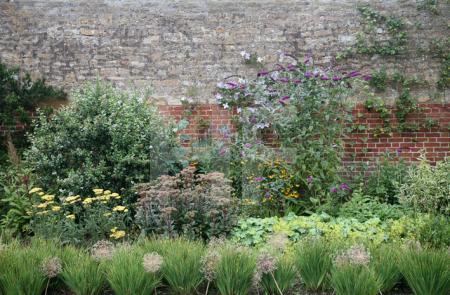 Gartenmauer in Tintinhull, Somerset