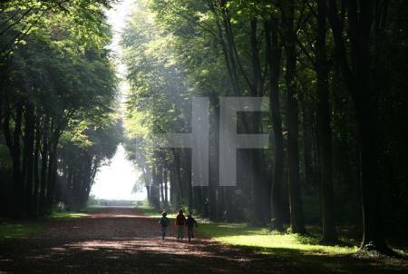 Spaziergänger im Schloßpark von Brühl