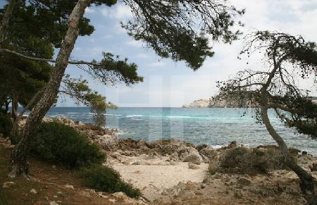 Die Bucht von Cala Agulla, Mallorca (3)