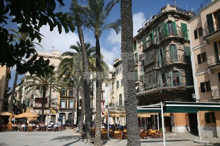 Plaça Llotja, Palma de Mallorca