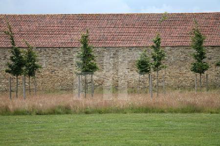 Neue Bäumchen im neuangelegten Park des Chåteau de Kerjean, Bretagne