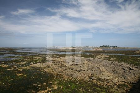 Nur bei Ebbe sichtbare Haus-Fundamente vor Roscoff, Bretagne