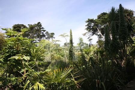 Im JardinGeorges-Delaselle auf der Ile de Batz, Bretagne