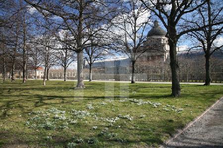 Blick auf die Staatskanzlei vom Hofgarten aus, München