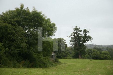 Landschaft in Wiltshire