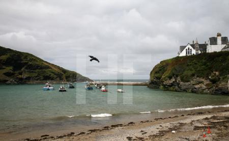 Port Isaac, Cornwall (4)
