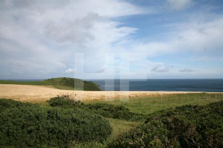 Pentire Head, Cornwall (5)