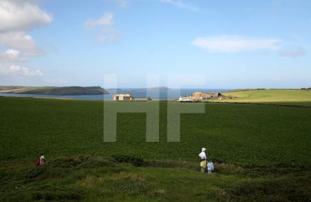 Pentire Head, Cornwall (11)