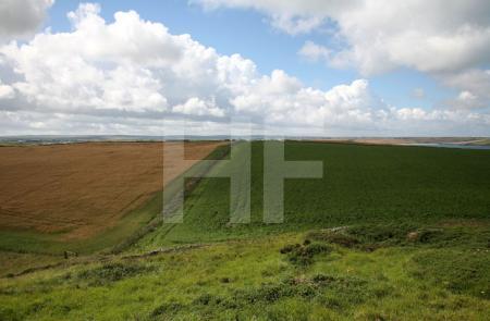 Pentire Head, Cornwall (12)