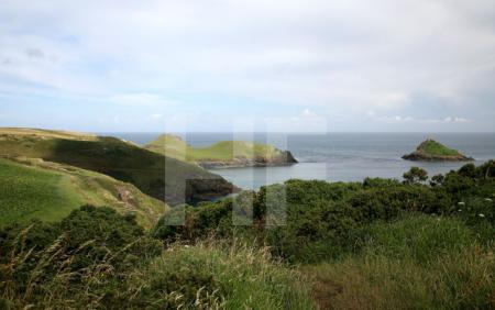 Pentire Head, Cornwall (14)