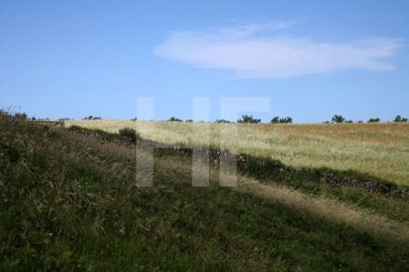 Pentire Head, Cornwall (16)