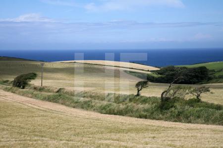 Landschaft bei Trelights, Cornwall (2)