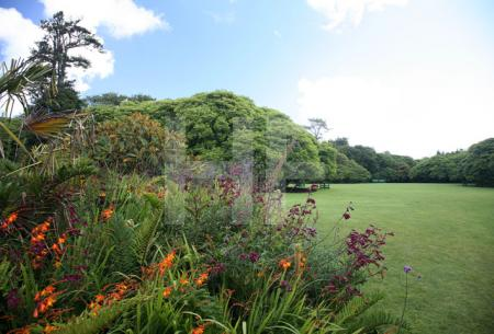 """""""The Lost Gardens of Heligan"""" bei Mevagissey, Cornwall (1)"""