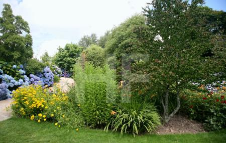 """""""The Lost Gardens of Heligan"""" bei Mevagissey, Cornwall (15)"""
