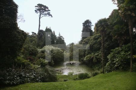 """The Lost Gardens of Heligan"" bei Mevagissey, Cornwall (16)"