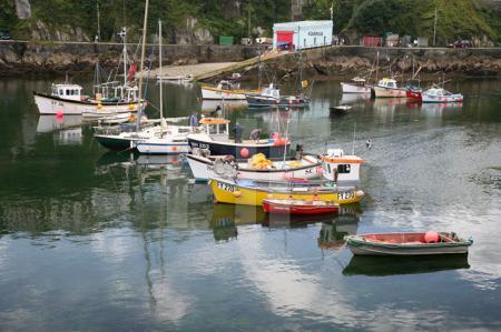 Der Hafen von Mevagissey, Cornwall (4)