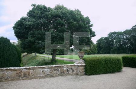 Im Park von Montacute House, Somerset (1)