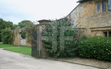 Cottages von Montacute House, Somerset